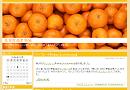 mikan_2col_l_kotatsu